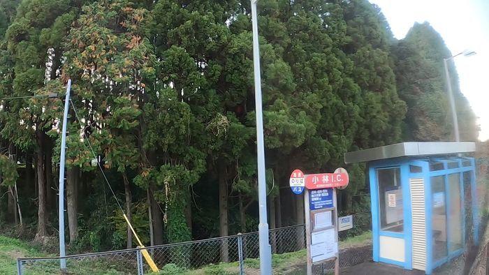 九州産交バス なんぷう号
