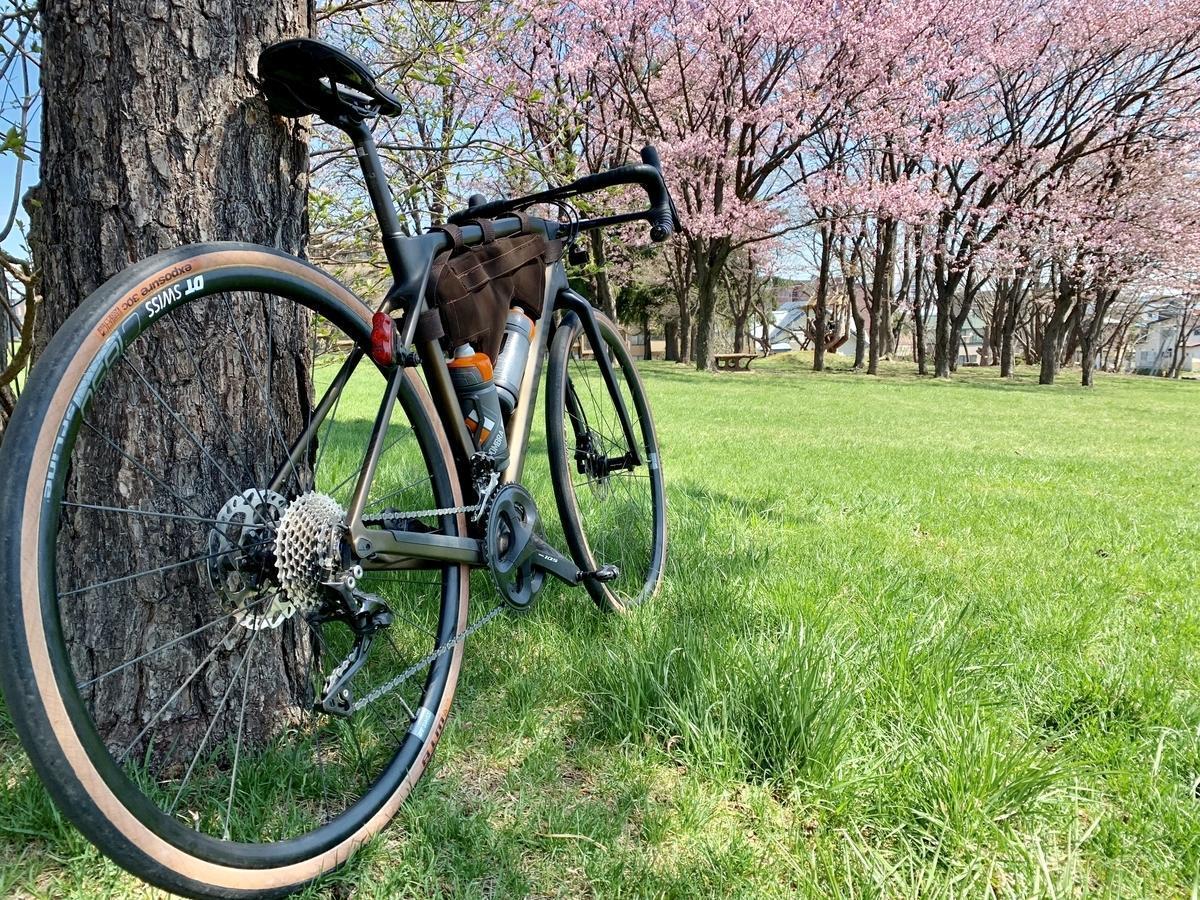 桜 ロードバイク 花見