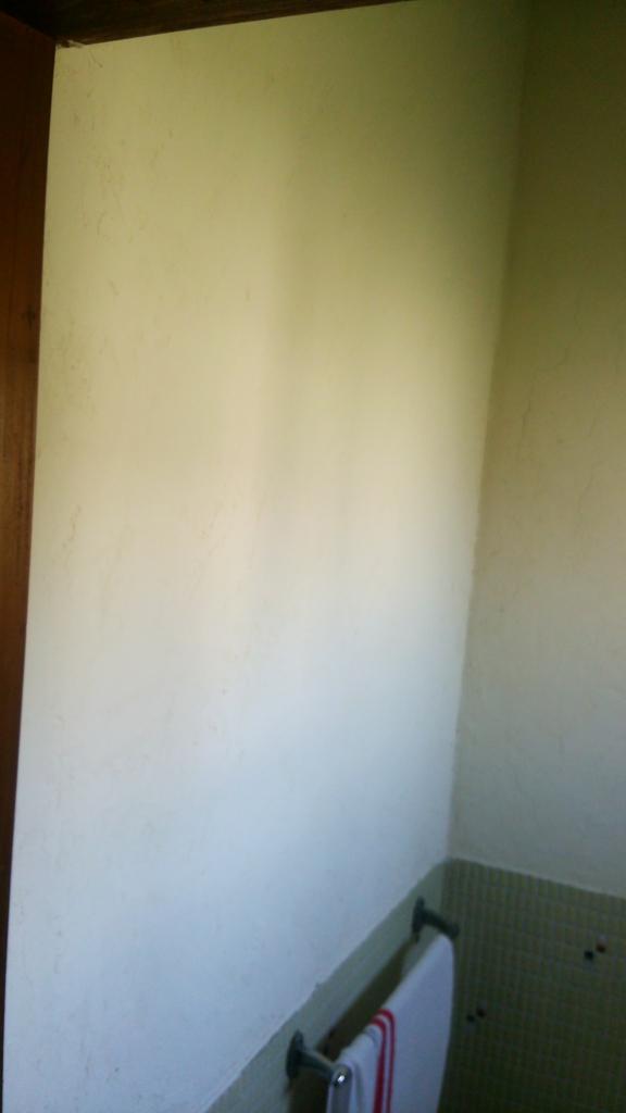 「漆喰うま〜くヌレール」で内壁を塗ってみました。