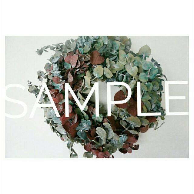 f:id:grantflower:20200904110607j:image