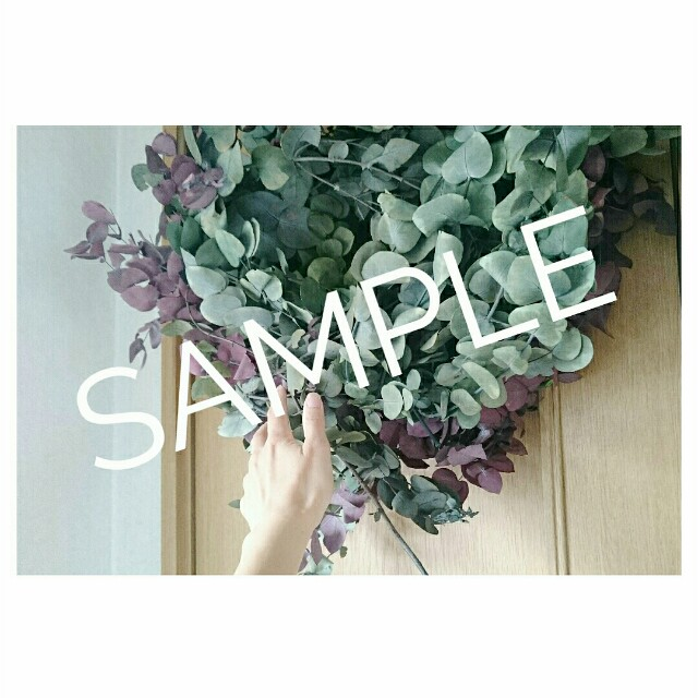 f:id:grantflower:20200906101839j:image