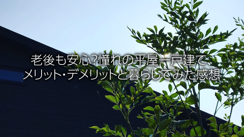 f:id:grayblack:20181108170222j:plain