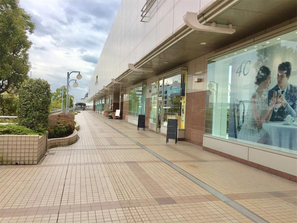 f:id:green_at_hiroshima:20190308073606j:image