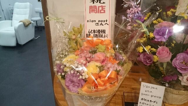 f:id:greengreceTakeyama:20161203205045j:image