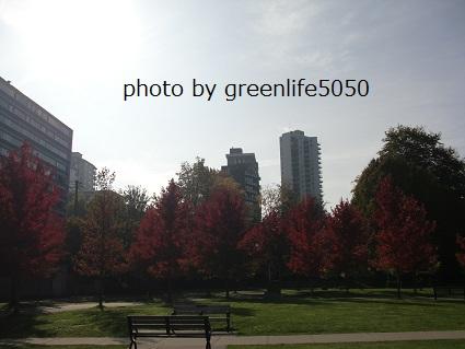 f:id:greenlife5050:20131016060825j:plain