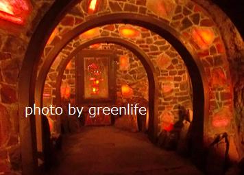 f:id:greenlife5050:20170521135701p:plain