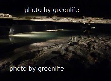 f:id:greenlife5050:20170521140134p:plain