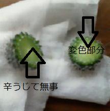 f:id:greenlife5050:20180120150351p:plain