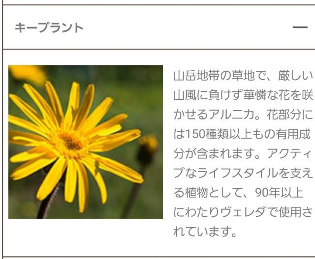 f:id:greenpink21:20201116193855j:image