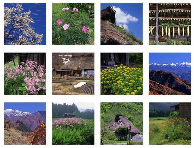 天空の牧場山之村四季