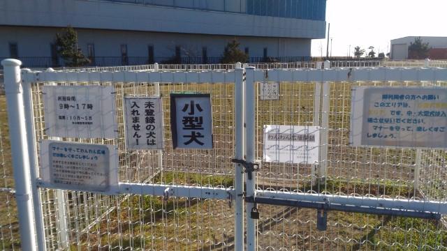 東扇島公園ドッグラン