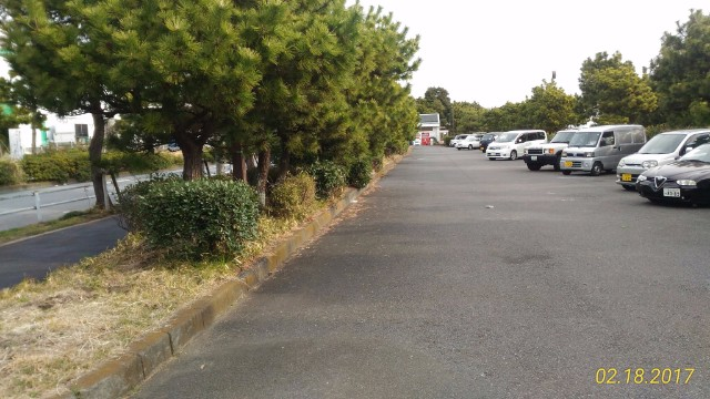 暁ふ頭公園駐車場
