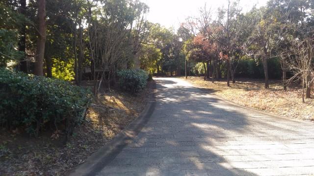 青海ふ頭公園