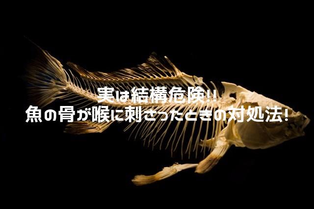 魚の骨対処法_アイキャッチ