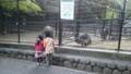 閉園間際の動物園