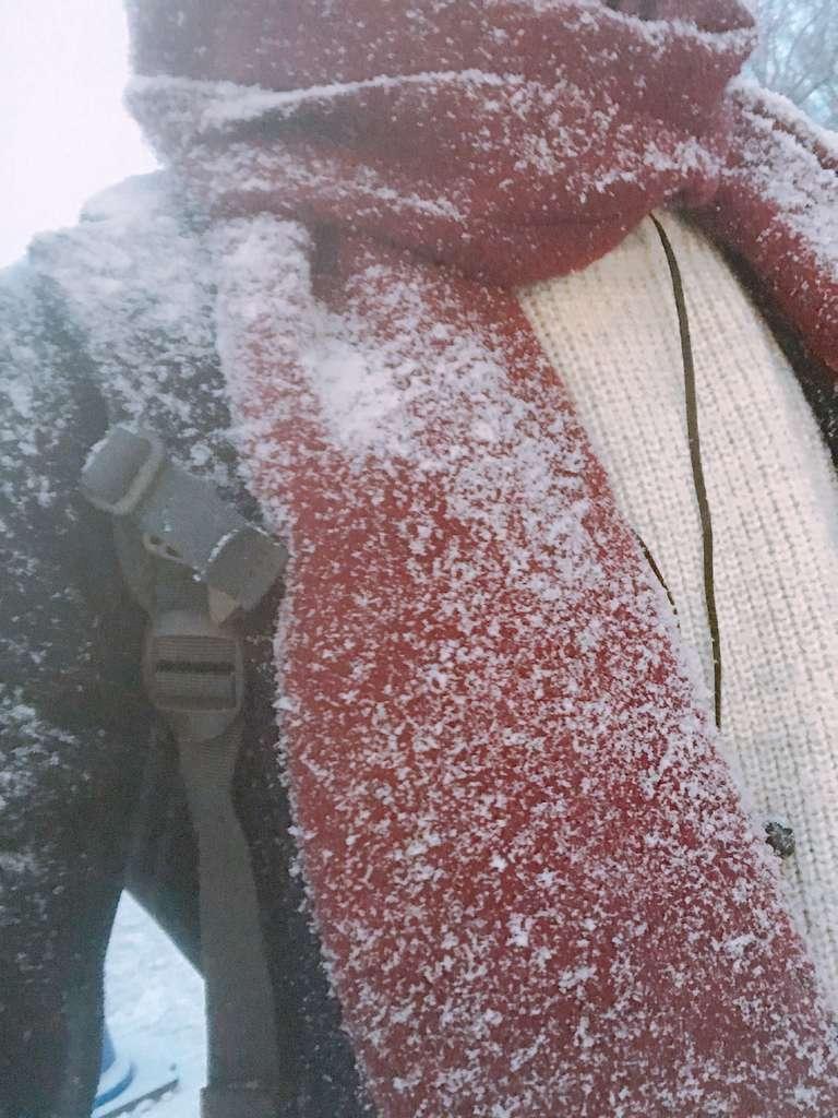 北海道の雪の中を歩いた際の状態