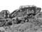 第一次世界大戦当時の戦車