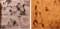 日本橋ヨヲコ G戦場へブンズドアと少女ファイト