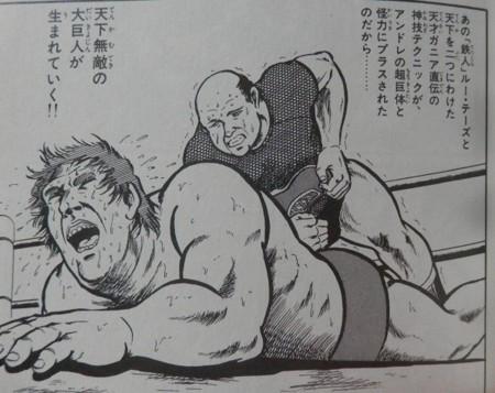 プロレススーパースター列伝  アンドレとバーン・ガニア