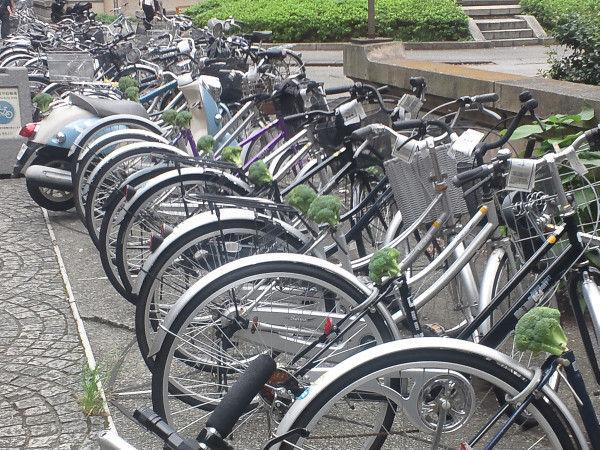 自転車のサドルがブロッコリーに