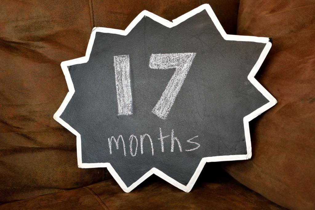 17months