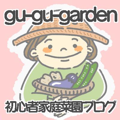 f:id:gu-gu-life:20210110215725j:plain
