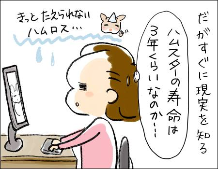 f:id:guchi35sai:20161215194216j:plain