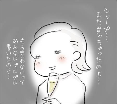 f:id:guchi35sai:20161228105035j:plain