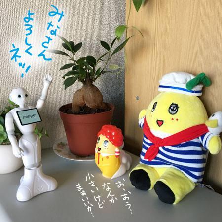 f:id:guchi35sai:20170106115348j:plain