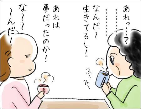 f:id:guchi35sai:20170311123521j:plain