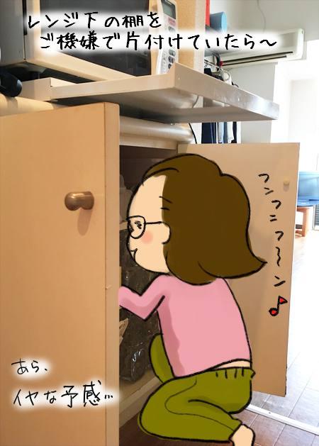 f:id:guchi35sai:20170512114640j:plain