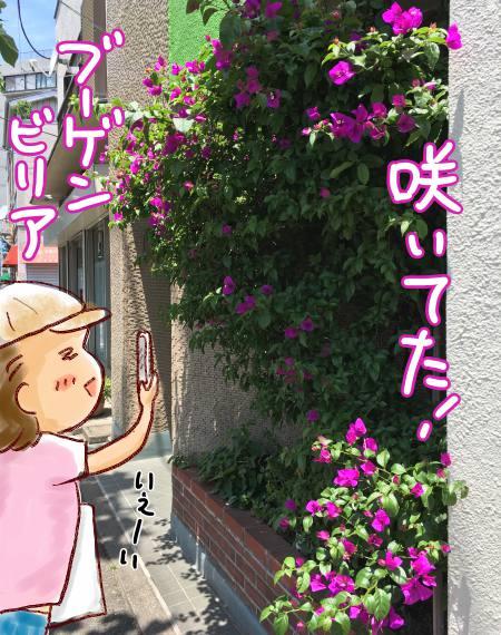 f:id:guchi35sai:20170609180004j:plain