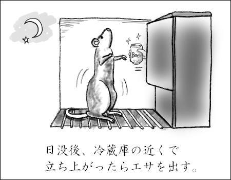 f:id:guchi35sai:20170616183153j:plain