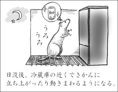f:id:guchi35sai:20170616192820j:plain