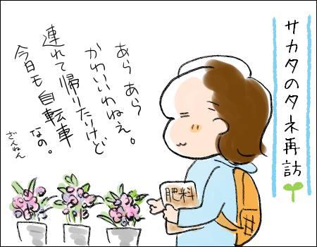 f:id:guchi35sai:20170724172349j:plain