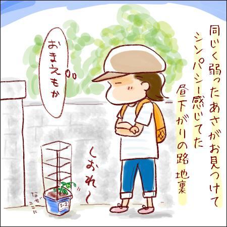 f:id:guchi35sai:20170803164357j:plain