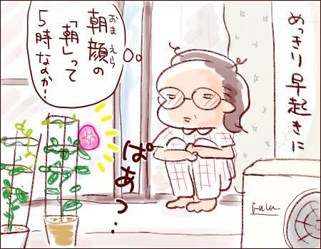 f:id:guchi35sai:20170826111056j:plain