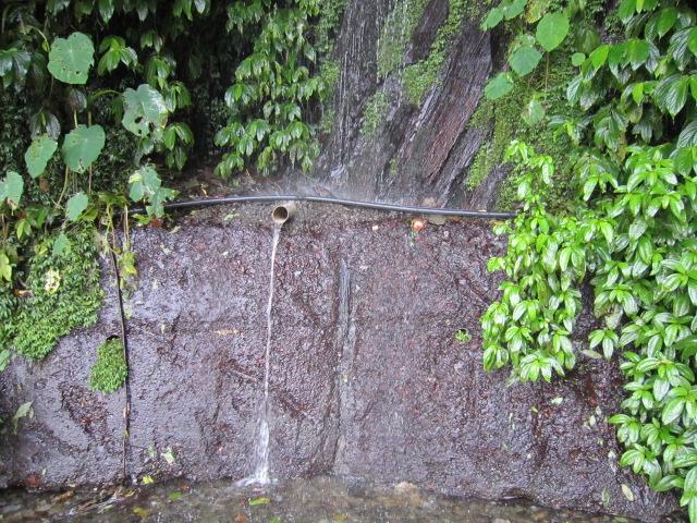 f:id:guesthousepuli:20110824102113j:image