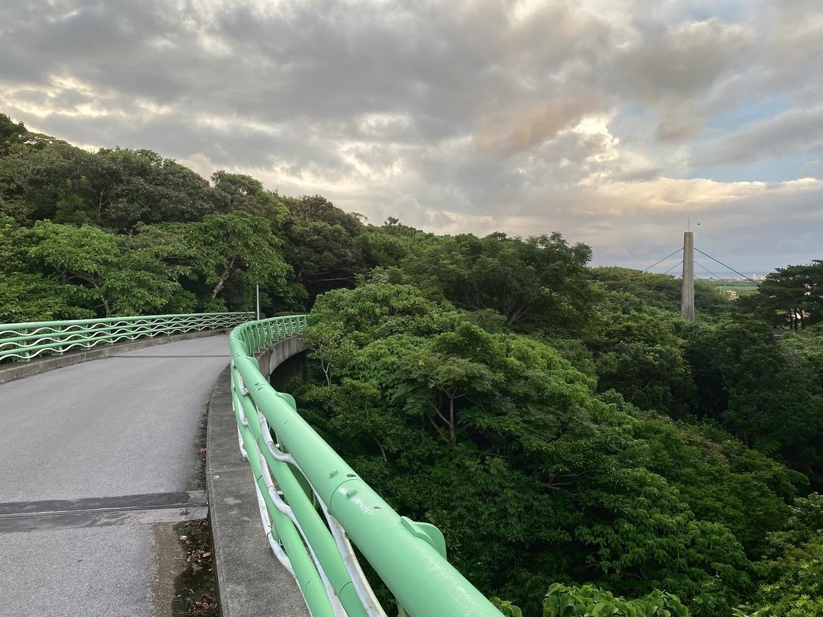 nozomi_bridge