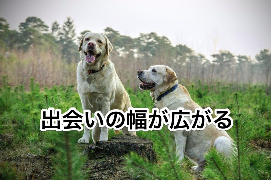 f:id:guheguhe:20170930025357p:plain