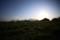 春の牧場。