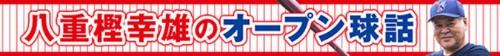 f:id:gunjix:20210218171130j:plain