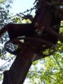 旭山動物園・レッサーパンダの吊り橋
