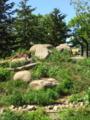 旭山動物園・オオカミの森