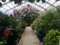 植物園@熱川バナナワニ園