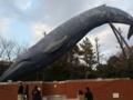 シロナガスクジラのモニュメント