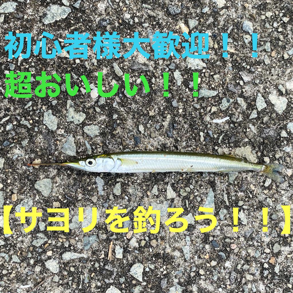 f:id:gureturishi:20200910094707p:image