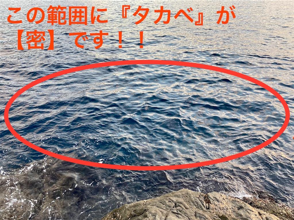 f:id:gureturishi:20201202160822j:image