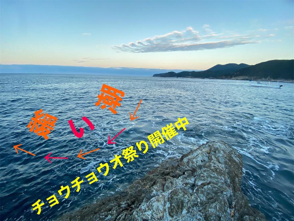 f:id:gureturishi:20201204160210j:image