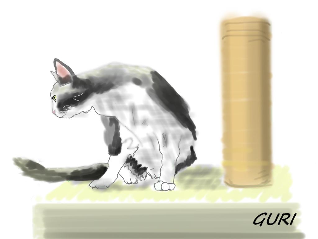 """""""仏壇を見る猫""""/"""